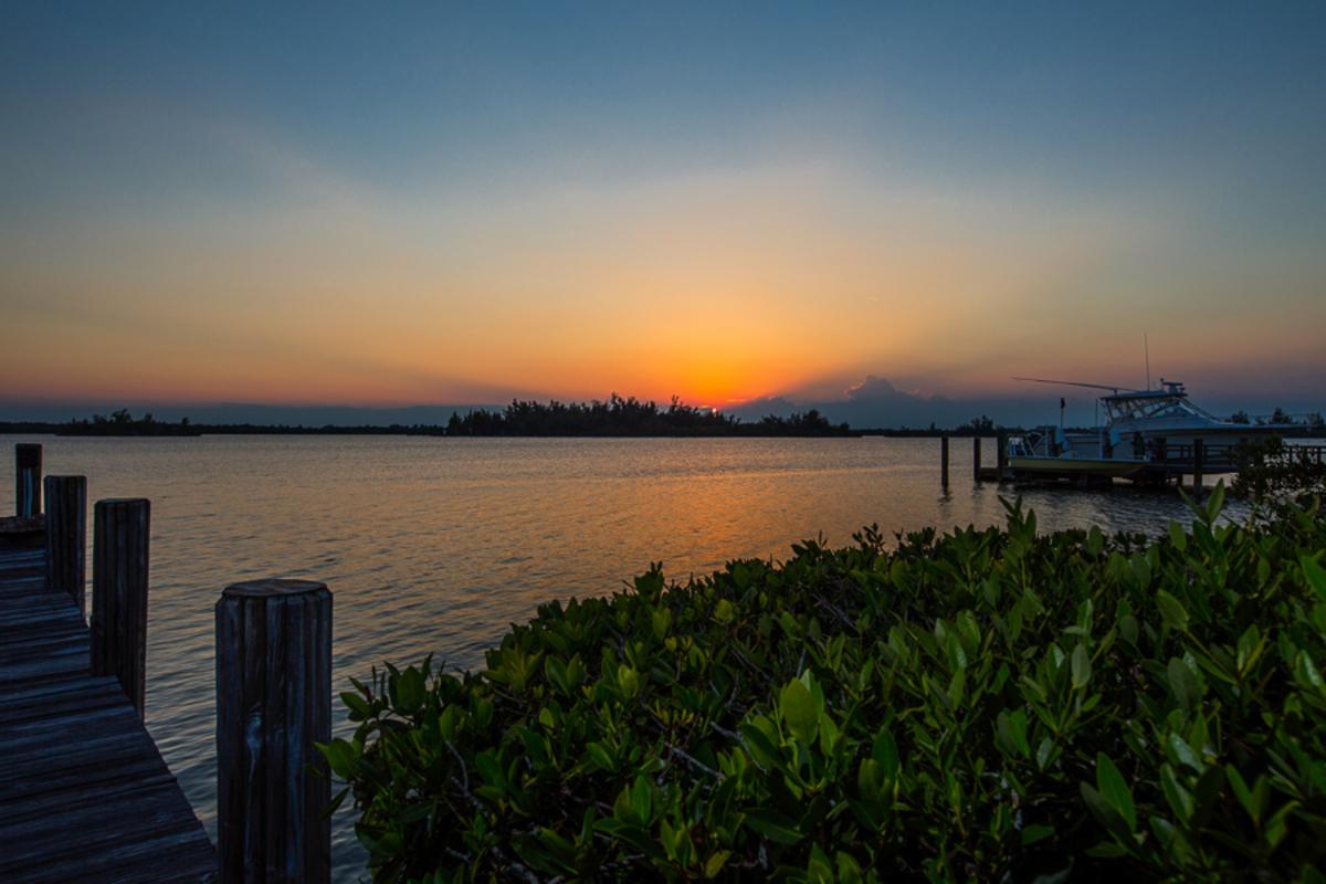 475 Coconut Sunset Jn