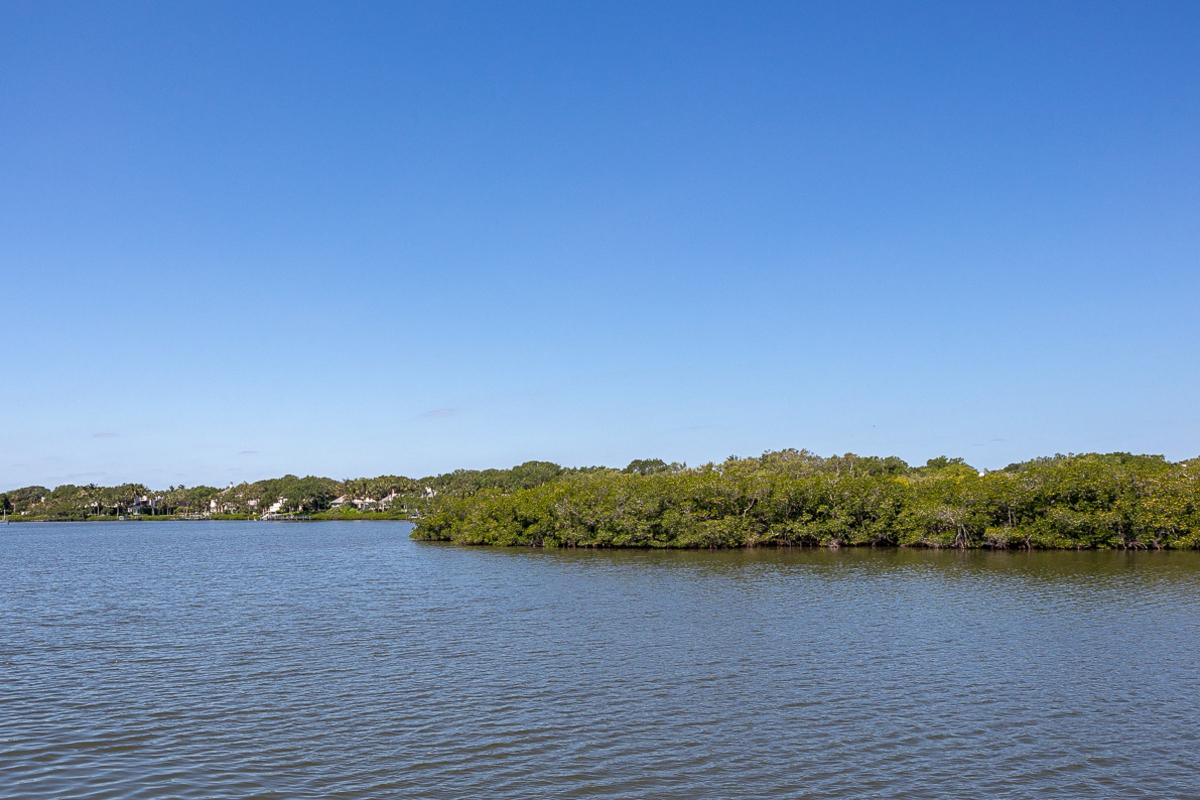 261 Isl Creek 7